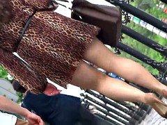 leopard dress , good pantyhose legs kitten