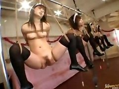 Japanese Bondage Kittens Mad Asiatic Orgy In The Classroom