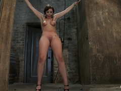 Girl next door gets bound spread, pussy floggedNipples tortured, made to cum like a common whore