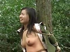 chinese_army_chick_pinioned_to_tree