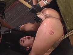kilted lassie enjoys a doggy strap on have an intercourse vid vid 1
