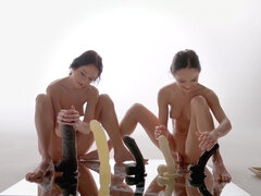Twins Fake Penis Experiment