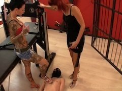 Female domination dangerous kittens